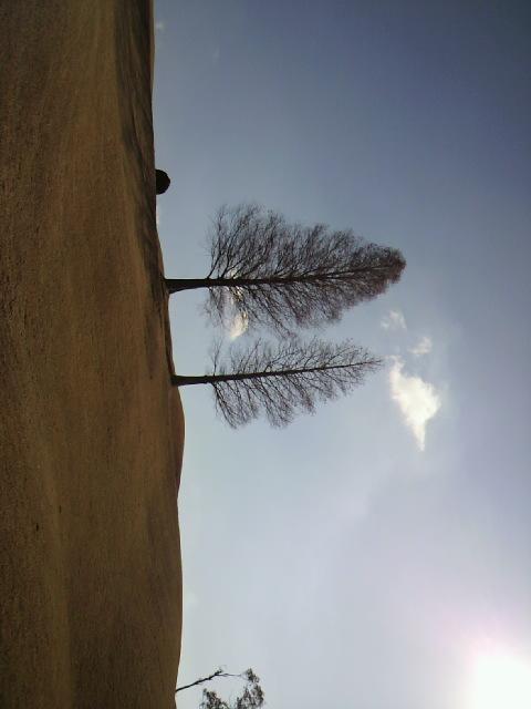 http://www.kokudo.jp/blog/images/2011010812260000.jpg